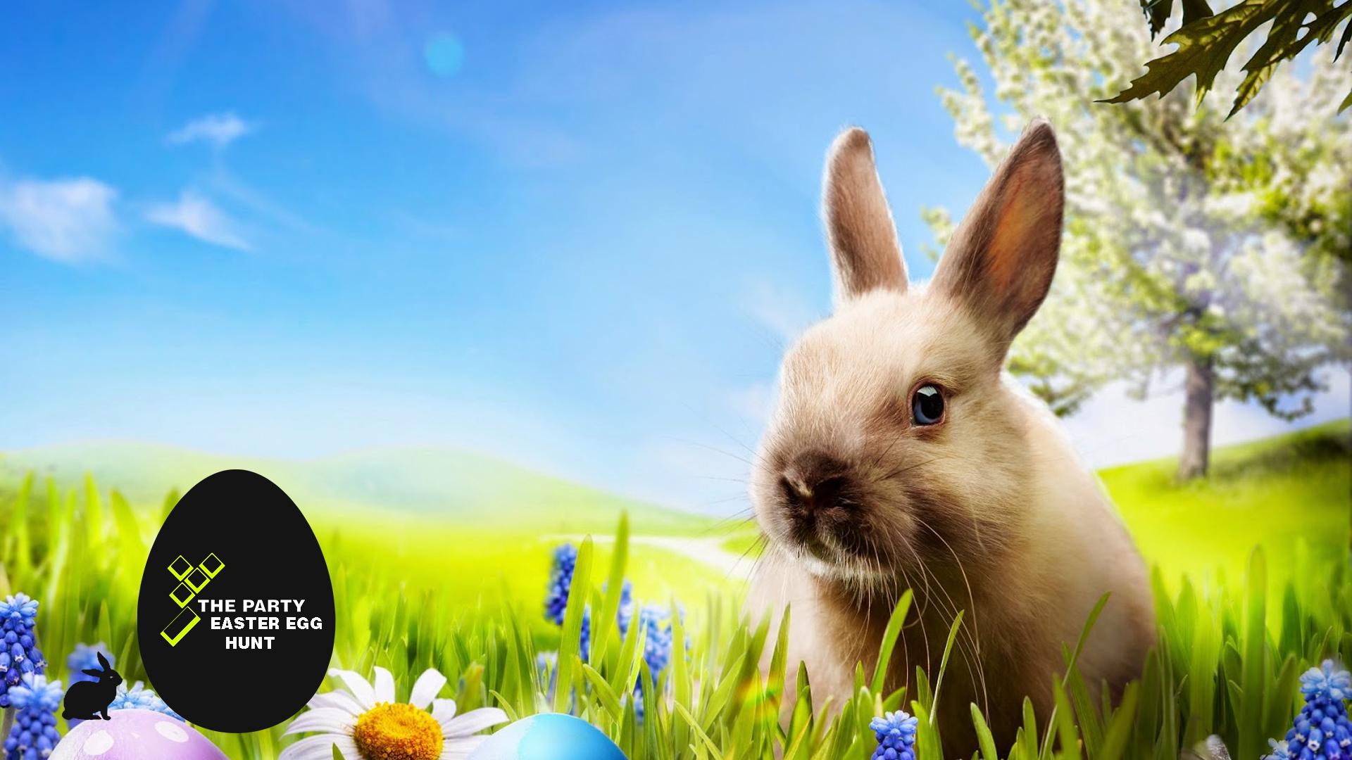 17.00 - Start Easter Egg Hunt